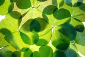 st-patricks-day-ireland