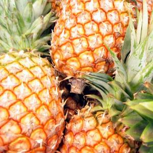 Pineapple_sq