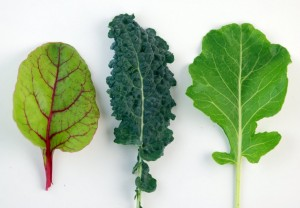 Dark-Leafy-Greens-Are-Good-Sources-of-Calcium-1024x711